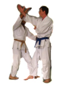 aikido-adult-belt-ranks