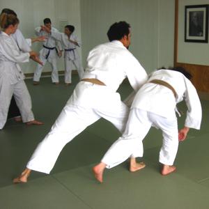aikido-adult-class
