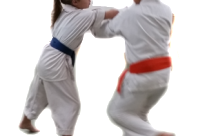Children's Martial Arts. What are the Benefits?