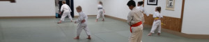 Children's Advanced Class @ Aikido of Escondido | Escondido | California | United States