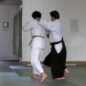 aikido-class-private-training